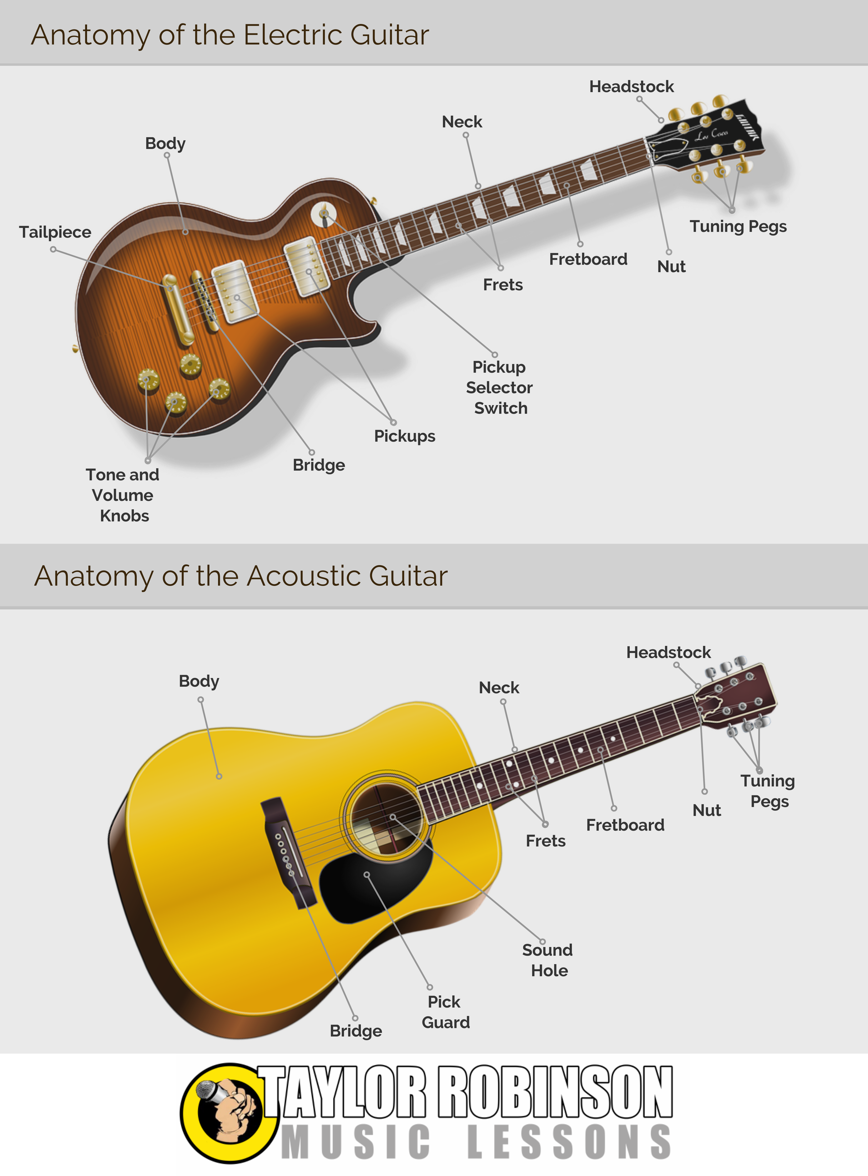Infographic Anatomy Of The Guitar Taylor Robinson Music Blog
