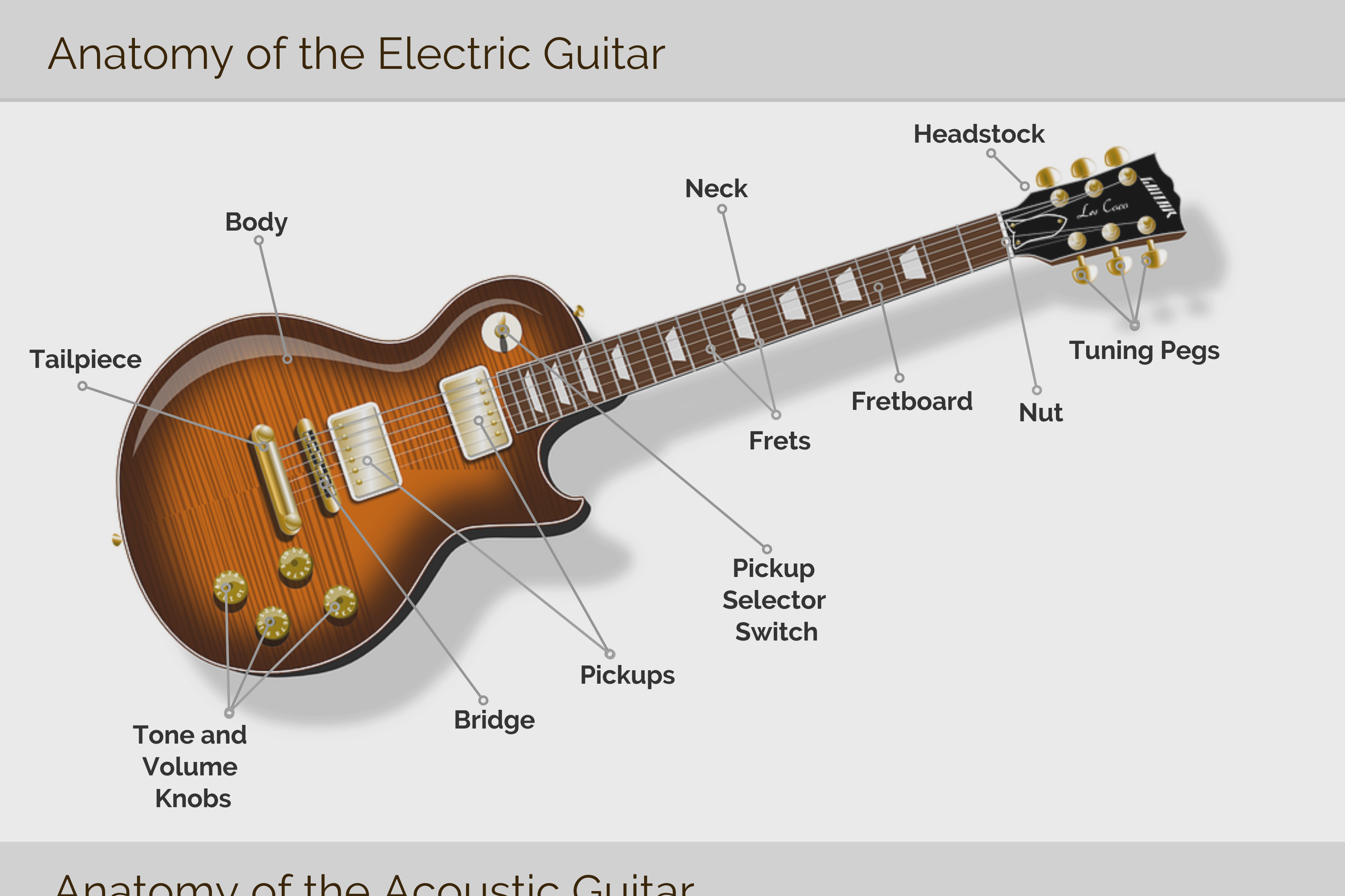 Infographic: Anatomy of The Guitar | Taylor Robinson Music Blog